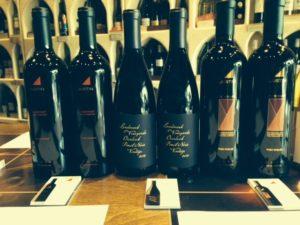 wine bottles for wine tasting event